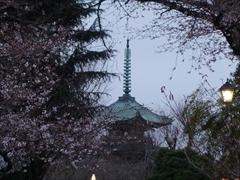 上野東照宮・五重塔